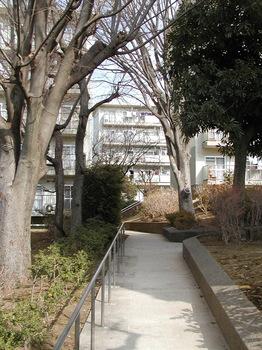 16-5号棟脇の小道.JPG