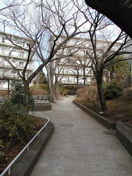 16-5号棟脇の小道2.JPG