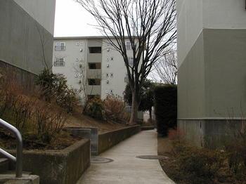 16街区の小道1.JPG