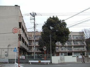 ひかり小全景2.JPG